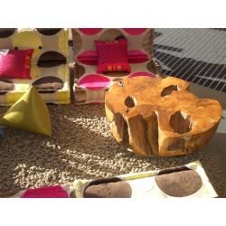Bois pétrifié table basse1